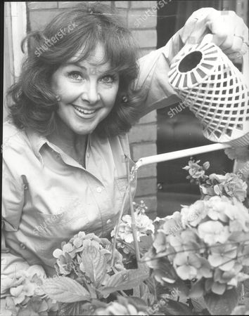 Actress Wanda Ventham Waters Flowers On The Balcony Of Her Kensington Apartment