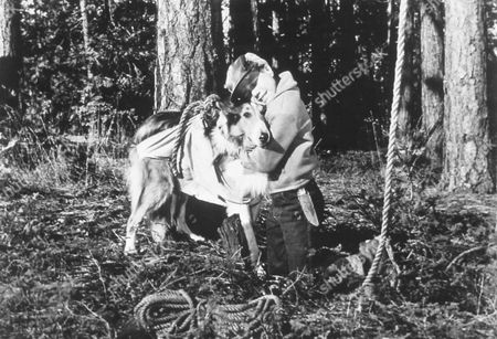Lassie's Great Adventure,  Jon Provost