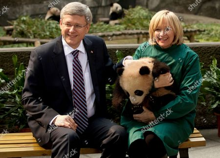 Canadian Prime Minister Stephen Harper and his wife Laureen Harper with a panda