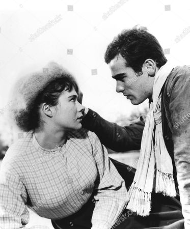 Sons And Lovers,  Heather Sears,  Dean Stockwell