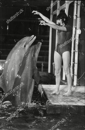 Susan Stranks Tv Presenter At Dolphinarium At Oxford Street Recording For Tv's Magpie.