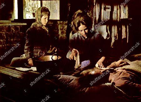 Will Penny,  Joan Hackett,  Charlton Heston