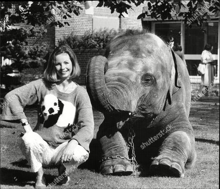 Lalla Ward Actress With Elephant At London Zoo Launching Her New Range Of Beastly Knit Sweaters 1985.