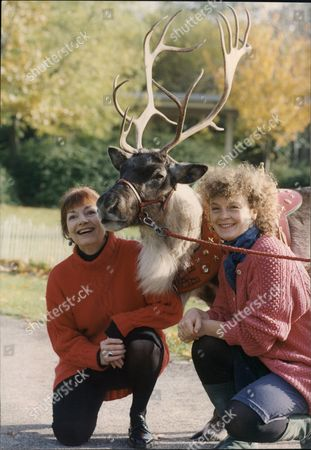 Editorial picture of Katharine Barker And Sonia Ritter With A Reindeer; Re: Young Vic Production Of Panto 'the Snow Queen'.