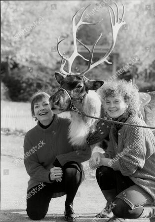 Katharine Barker And Sonia Ritter With Reindeer For 'snow Queen' Pantomime.