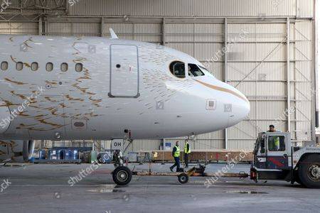 'The Dove' A319 airbus