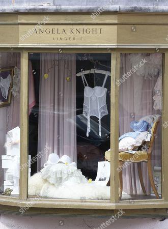 'Angela Knight' lingerie shop