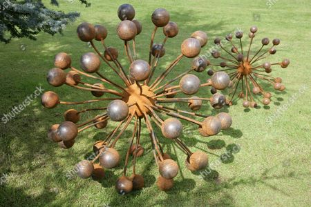 Seedhead by Christopher Townsend