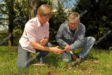 Editorial picture of Parents of murdered Joanna Yeates plant flowers in memorial garden, Hampshire, Britain - 13 May 2012