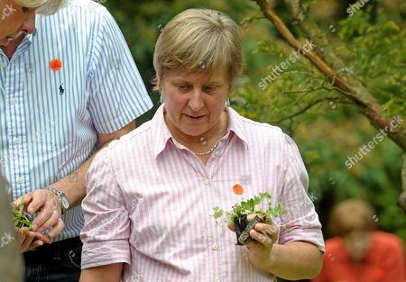 Jo Yeates' mother Teresa plants a flower