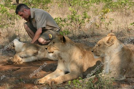 David Youldon with lion