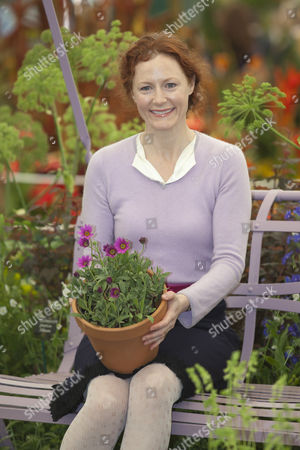 """Geraldine Somerville launches new plant Osteospermum """"In The Pink """" at Hardy's Cottage Garden Plants"""