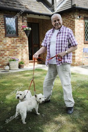 Editorial photo of Ex Boxer Terry Downes With Dogs Pic Andy Hooper