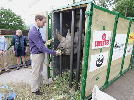 Prince William feeds a black John Edwards called Zawadi