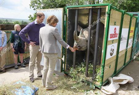 Stock Photo of Prince William and Kate Silverton feed a black John Edwards called Zawadi