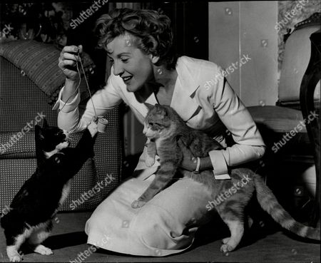 Stock Image of Actress Anne Crawford With Her Cat Whiskey.