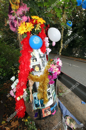 The site of glam rock legend Marc Bolan's death in a car crash