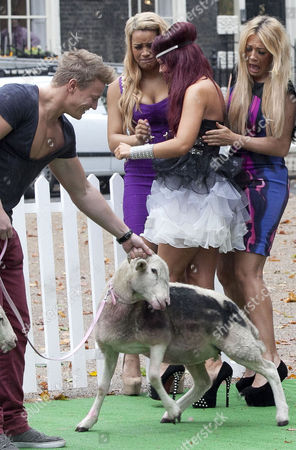 Stock Photo of Lateysha Grace and Nicole Morris looking at sheep