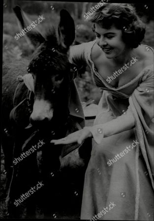 Actress Patricia Driscoll With 'sapphire' The Donkey At Foxwarren Park In Surrey.