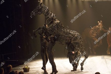Editorial photo of 'War Horse' 5th anniversary performance, London, Britain - 25 Oct 2012
