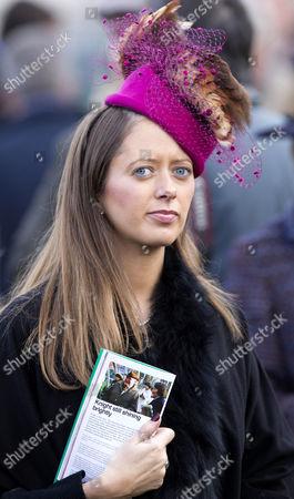 Editorial photo of Open meeting at Cheltenham racecourse, Gloucestershire, Britain - 17 Nov 2012