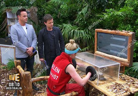 Live Bushtucker trial, Bad Day At The Office - Helen Flanagan, Anthony McPartlin and Declan Donnelly