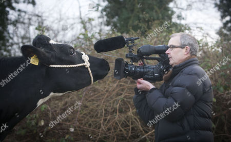 Kitty one of his herd with documentary maker Andy Heathcote