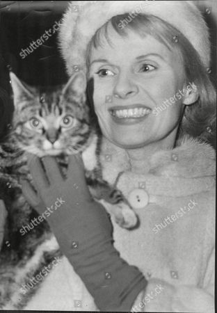 Stock Picture of Actress Ann Todd With Cat Dorothy Anne Todd (24 January 1909 Oo 6 May 1993) Was An English Actress And Producer. She Was Born In Hartford Cheshire And Was Educated At St. Winifrid's School Eastbourne Sussex. She Became A Popular Actress From Appearing In Such Films As Perfect Strangers (1945) (as A Nurse) And The Seventh Veil (1945) (as A Troubled Concert Pianist). She Is Perhaps Best Known To American Audiences As Gregory Peck's Long-suffering Wife In Alfred Hitchcock's The Paradine Case (1947). She Later Produced A Series Of Travel Films. Her Autobiography Is Entitled The Eighth Veil An Allusion To The Film Which Made Her A Star In Britain. Todd Was Known As The 'pocket Garbo' For Her Diminutive Blonde Beauty.