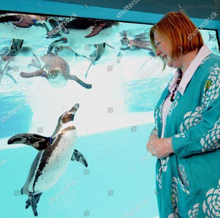 Edwina Hart with penguins