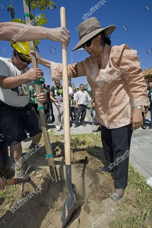Los Angeles City Council member Jan Perry plants the first tree at a tree planting celebrating Earth Day in South Central Los Angeles. LA Conservation Corps joins with community volunteers to plant trees along West Adams and Central Avenue outside a new Fresh and Easy Market that plans to open on the corner
