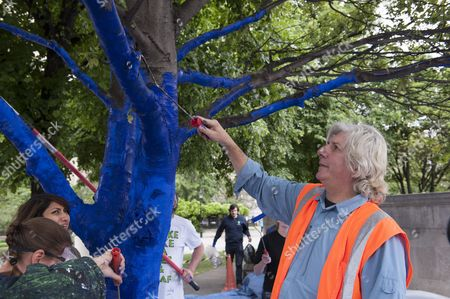 Editorial image of The Blue Trees art installation, St Paul's Cathedral, London, Britain - 25 Jun 2013