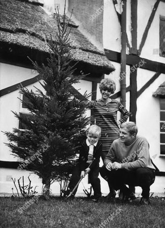 Footballer Francis Lee With Wife Jean Lee And Son Gary Lee And Their Christmas Tree At Home In Westhoughton Lancashire.