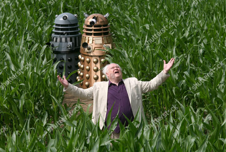 Editorial photo of 'The World's Biggest Dalek' The York Maize Maze, Yorkshire, Britain - 12 Jul 2013
