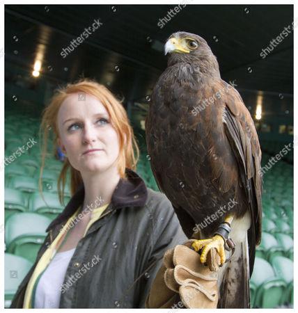 Editorial image of Bird Handler Imogen Davis With Rufus The Hawk On Centre Court On His Return.