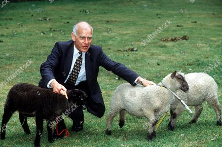 Editorial picture of 1997 SIR PETER DE LA BILLIERE AND SHEEP