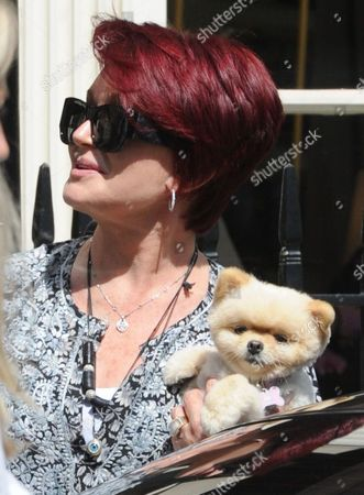 Stock Photo of Sharon Osbourne and her Pomeranian dog, Mr Chips leaving the Daniel Galvin Hair salon