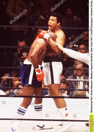 Muhammad Ali v Ernie Shavers Madison Square Gardens New York 1977 Ali v Shavers (New York)