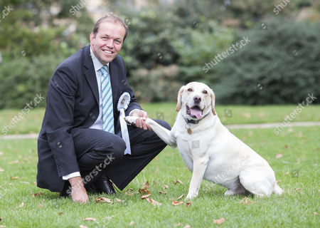 Conservative MP David Burrowes with Cholmeley, his Golden Labrador