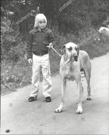 Ricky Schroeder Child Actor With His Great Dane Dog.