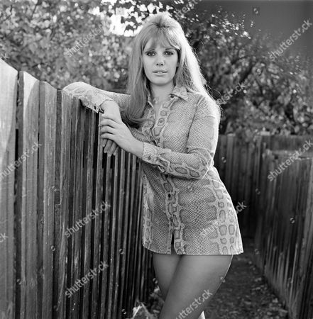 Jeanette Wild