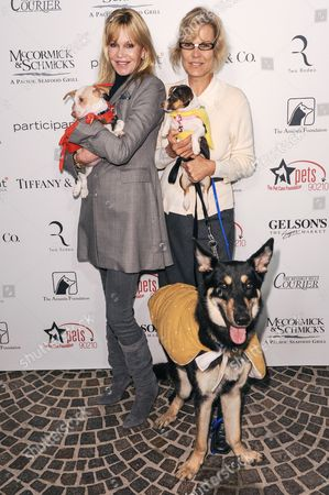 Editorial picture of Amanda Foundation's Annual Bow Wow Halloween event, Los Angeles, America - 27 Oct 2013