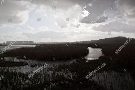 Rain storm over reed beds at RSPB Minsmere Suffolk, view from Island Mere Hide.