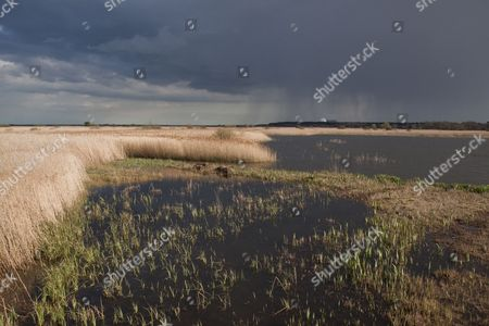 Looking south over storm clouds from Island Mere Hide at RSPB Minsmere. Sizewell Nuclear power station in far distance.