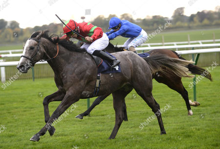 (L) Expert (Sean Levy) wins The Express Cafes Conditions Stakes from (R) Mar Mar (Silvestre De Sousa)