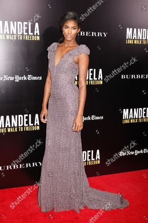 Editorial photo of 'Mandela: Long Walk to Freedom' film screening, New York, America - 25 Nov 2013