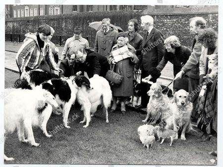 Demonstration 1985 - Actress Irene Handl Joins Protest With Dogs And Their Owners Outside The House Of Commons To Have The Dog Licence Abolished.