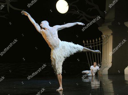 Editorial image of Matthew Bourne's 'Swan Lake' performed at Sadler's Wells Theatre, London, Britain - 08 Dec 2013