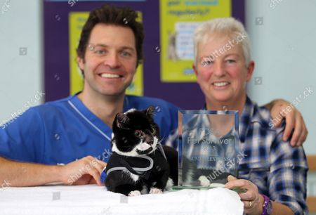 Robbie the cat with his award, new owner Gill Smith and vet Steve Leonard