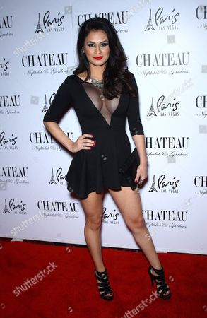 Editorial photo of AVN After Party at Chateau Nightclub, Las Vegas, America - 18 Jan 2014