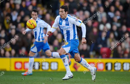 Leonardo Araujo Ulloa of Brighton & Hove Albion